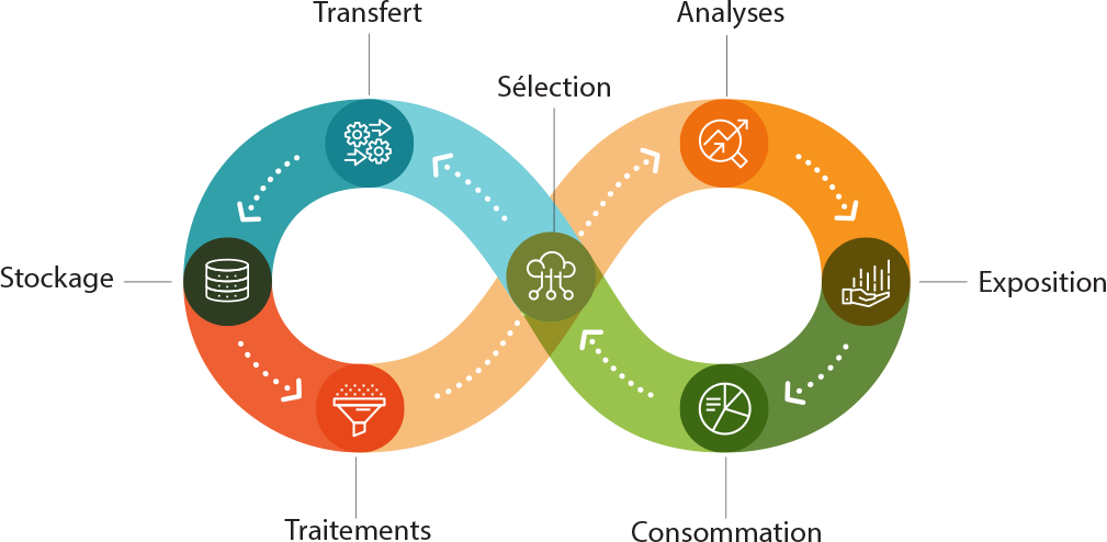 Sélection, analyses, exposition, consommation, sélection, transfert, stockage, traitements, sélection, analyses...